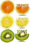 orance lemon kiwi slices - stock illustration