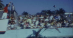 Dolphin SHow Miami Seaquarium 60s USA 16mm Stock Footage