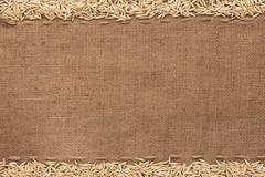 oat lying on sackcloth - stock photo