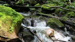 Beautiful brook with cold water Stock Footage