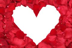petals of red roses forming heart love topic on valentine's and mothers day - stock photo