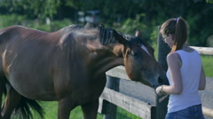 Young woman playing with horse on a ranch Stock Footage