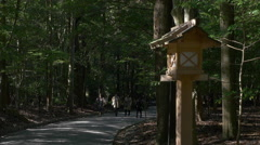 Path Through Forest at Ise Grand Shrine in Japan Stock Footage
