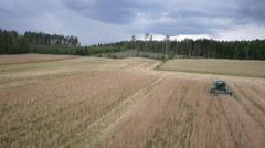 Drone aerial tracking view of spelt harvesting in Finland Stock Footage