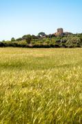 Spanish country scene Stock Photos