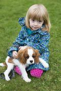 Young girl sitting with puppy king charles spaniel Stock Photos