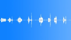 SFX - Door squeaks(basement) Sound Effect