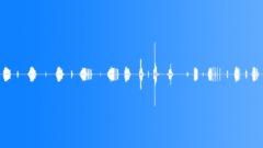 SFX - Door squeaks(kitchen) Sound Effect