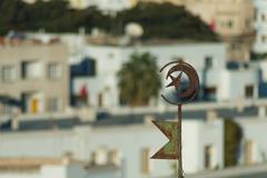 tunisian emblem on roof - stock photo