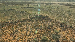 Early morning Australian Desert in the outback Stock Footage