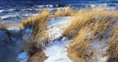 Dune scene with beach grass and snow along a Baltic Sea beach Stock Footage