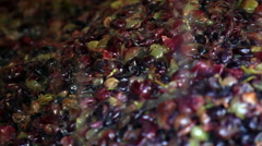 Closeup of grapes in wine making process Stock Footage