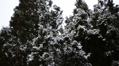 Snow plot Stock Footage