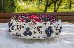 Homemade cake topped with blueberries and pieces of red jelly Stock Photos