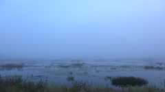 Time lapse Fog over swamp before sunrise Stock Footage