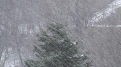 Winter landscape. Snowing season. Beautiful winter holiday. - stock footage