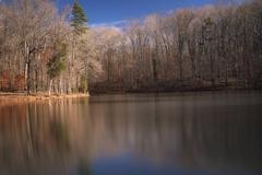 Late autumn pond Stock Photos