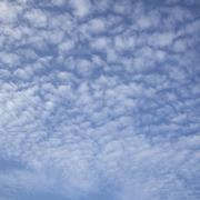 regular pattern of fluffy clouds - stock photo