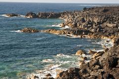 Vulcanic coastline in lanzarote Stock Photos