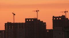 Birds flight at skyscraper building site Arkistovideo
