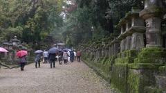 Stone Lanterns at Kasuga Taisha in Nara, Japan Stock Footage