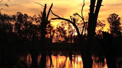 Lake Mulwala, Murray River Australia sunset, timelapse Stock Footage