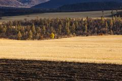 Rural scene in Inner Mongolia province,China - stock photo