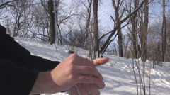 Close up hands making a snowball fresh white snow transformed, forest background - stock footage