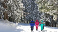 Winter vacation on the mountain Stock Footage