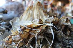 Dried Fish Stock Photos