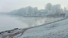 Morning fog in winter Stock Footage