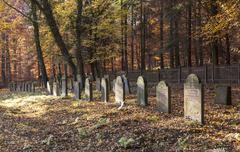 Old jewish cemetery in the oak forest Stock Photos