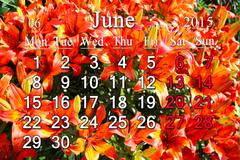 calendar for july of 2015 on the background of red lilies - stock illustration
