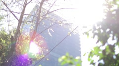 HSBC bank with sunflare Stock Footage