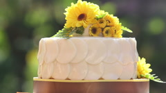 Stock Video Footage of white creamy delicious cake rotate