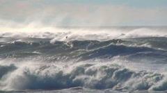Ocean wind waves sea birds  Stock Footage