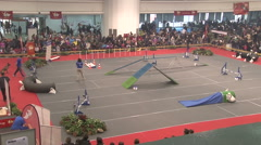 The court for dog agility,dog contest,wide angle view Stock Footage