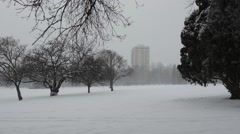 City park during a blizzard Stock Footage