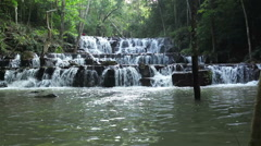 forest waterfall at National Park, wide-angle of view shot panorama - stock footage