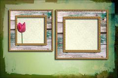 Grunge wooden frames with tulip Stock Illustration
