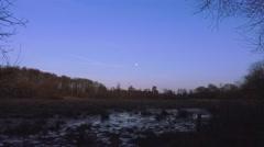 Winter marshland trees countryside rural scene Stock Footage