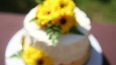 white creamy delicious cake - stock footage
