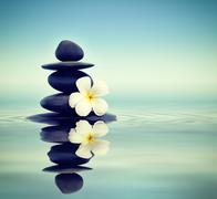 Zen stones with frangipani Stock Photos