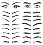 Stock Illustration of eyes  eyebrow   women and man vector