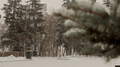 Snowfall in the Park Stock Footage