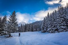 winter expedition to the mountains - stock photo