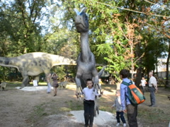 Exhibition of dinosaurs. Related clips are in my portfolio in 1920x1080. Stock Footage