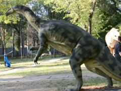High dinosaur. Related clips are in my portfolio in 1920x1080. - stock footage