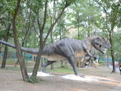 Dinosaurs in park. Related clips are in my portfolio in 1920x1080. - stock footage
