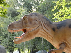 Exhibition of dinosaurs. Related clips are in my portfolio in 1920x1080. - stock footage